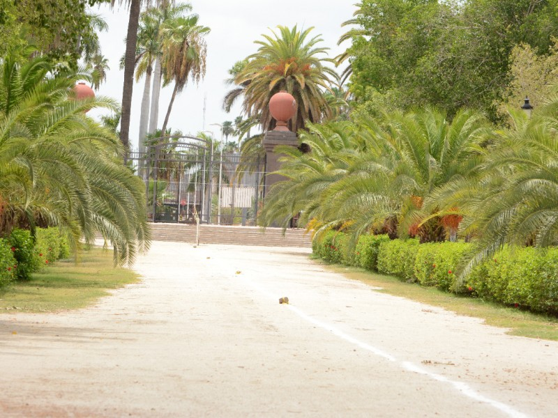Jardín Botánico de Los Mochis regresa a su horario normal