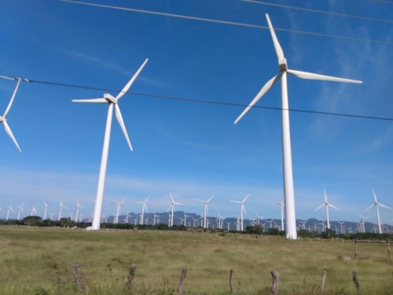 Juicios de Amparos contra proyectos eólicos no han procedido