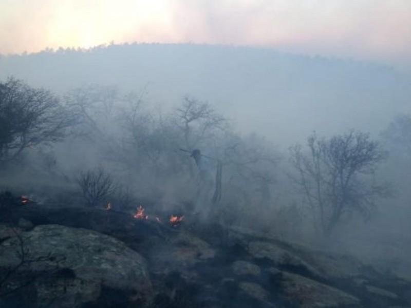 La actual afectación de incendios forestales rebasa la de 2020