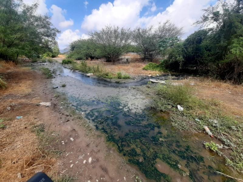 Laguna de aguas negras contamina río Tehuantepec y zonas aledañas