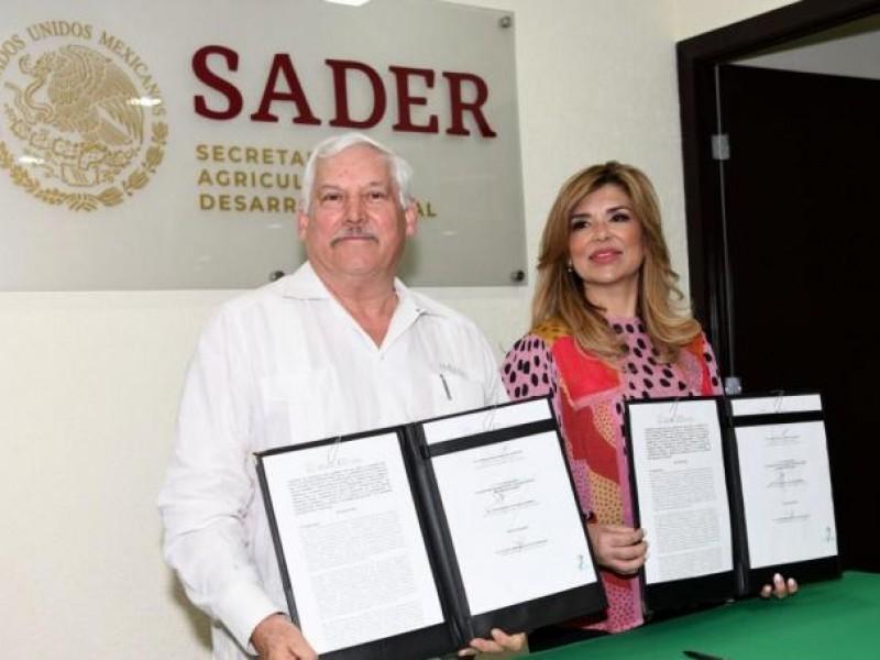 Las instalaciones de la SADER no están listas