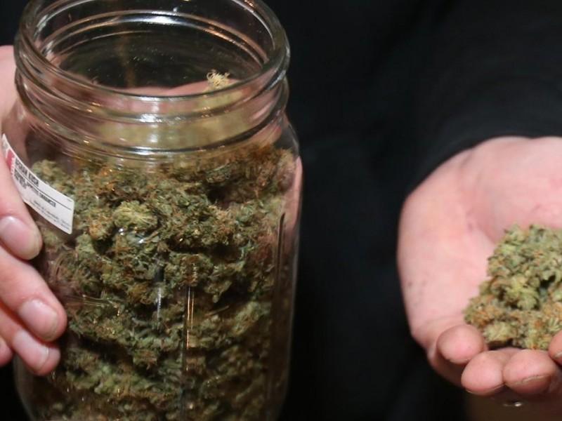 Le dan el sí a la marihuana