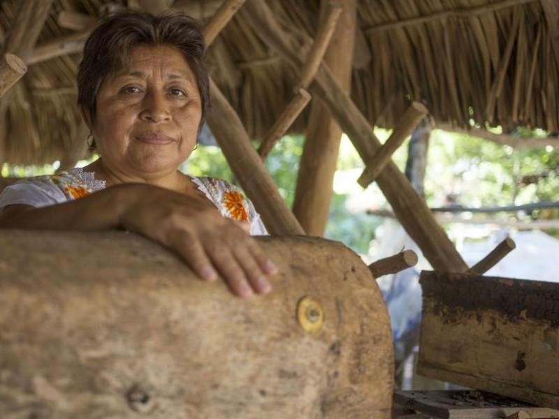 Leydy Pech, mexicana le gana la batalla a Monsanto