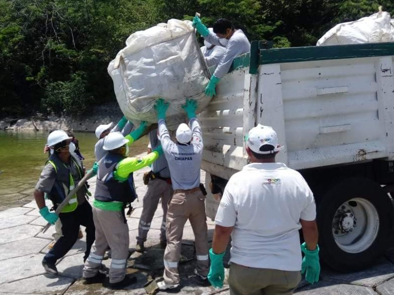 Limpian el cañón del sumidero: PC