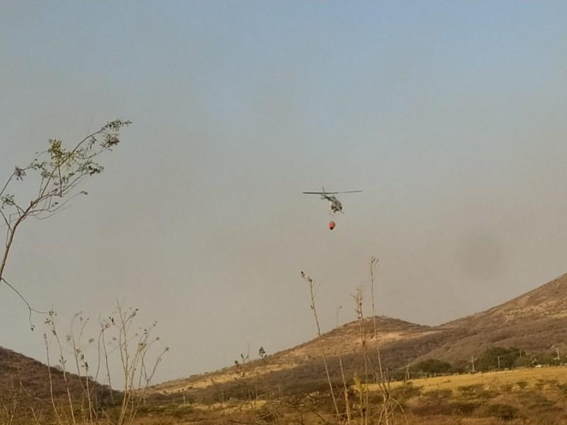 Líquidan incendio en cerro de Totoltepec