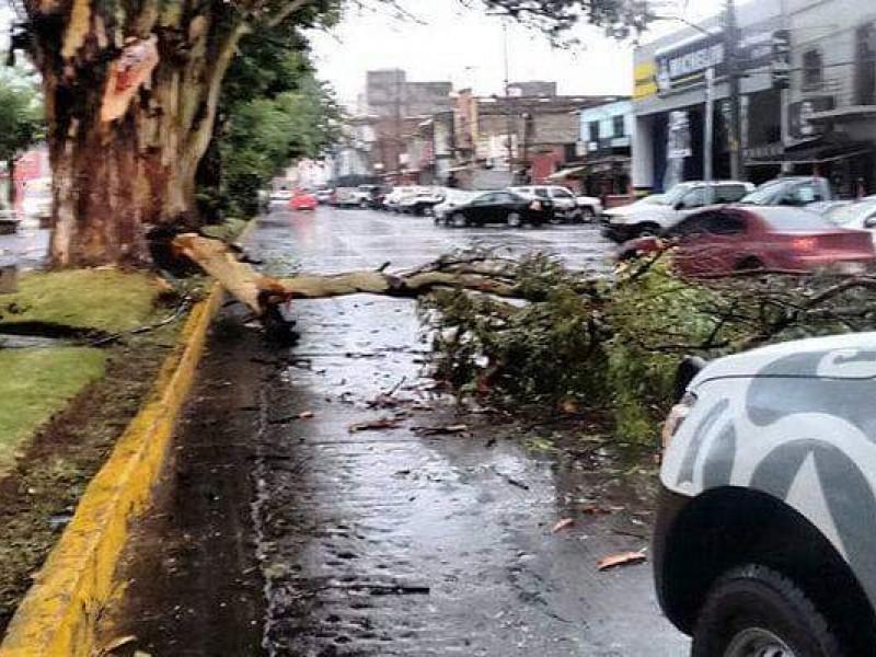 Listo operativo y albergue ante temporada de lluvias en Zamora