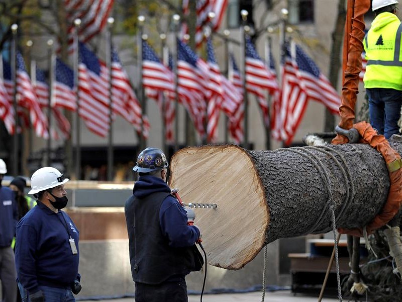 Llega a Nueva York el tradicional árbol navideño del Rockefeller
