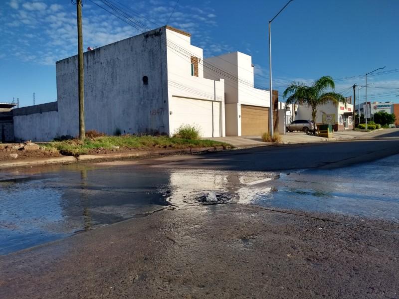 Llegarán 10 vactor para atender aguas negras: JAPAMA