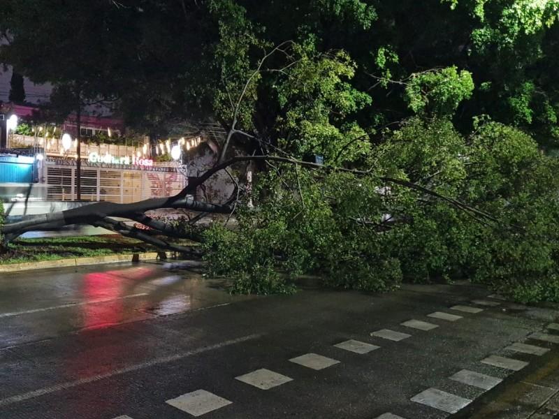 Lluvia nocturna deja inundaciones en vía pública en Zapopan