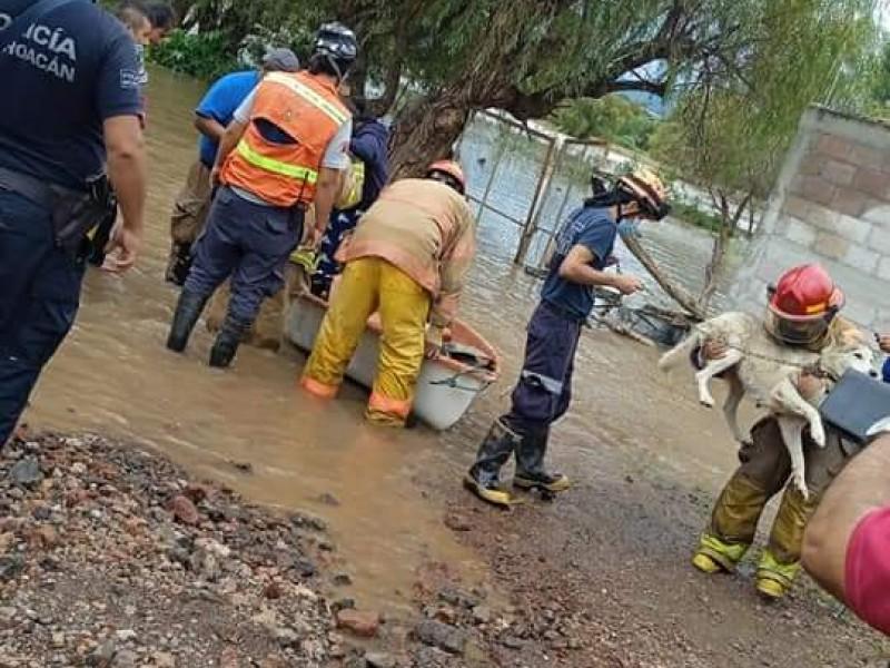 Lluvia provoca inundaciones en colonias de Maravatío