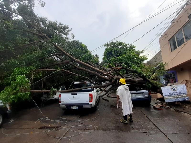 Lluvias muy fuertes para cinco regiones de Chiapas