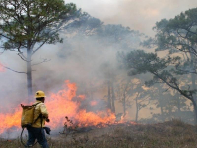 Lluvias no llegan a municipios con mayor número de incendios