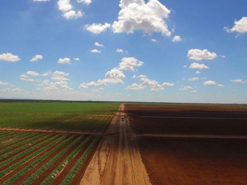 Lluvias y escurrimientos benéficos para siembras y ganado