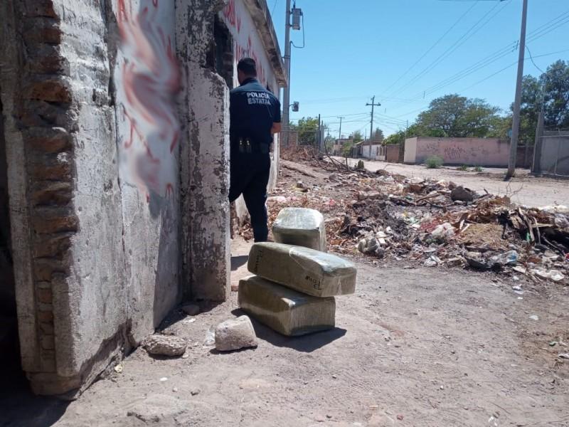 Localiza PESP cerca de 37 kilogramos de narcótico en Navojoa