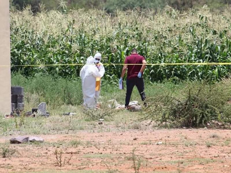 Localizan restos humanos en Guadalupe