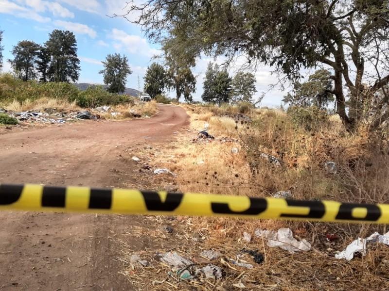 Localizan tres cuerpos sin vida en Fresnillo