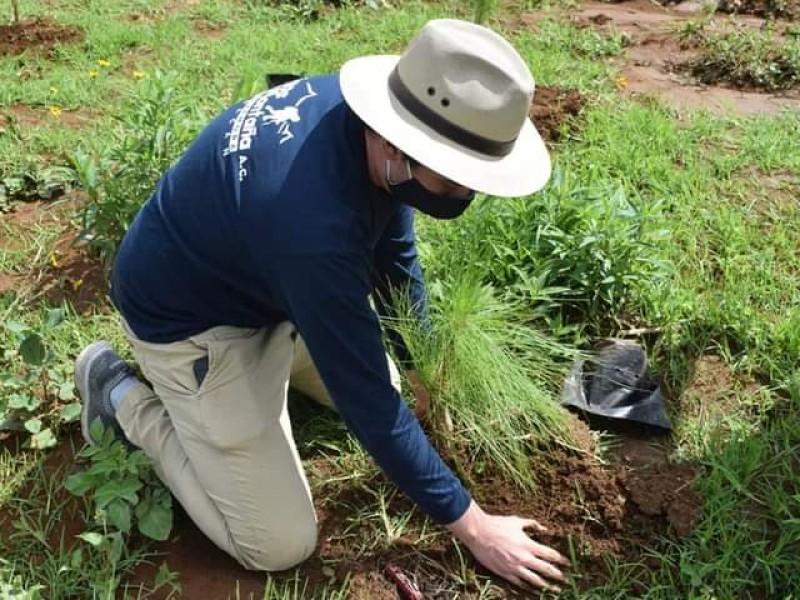 Logra Tangancícuaro declaratoria de conservación natural del Cerro Grande