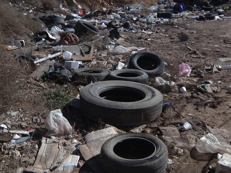Los basureros clandestinos son un problema ecológico...