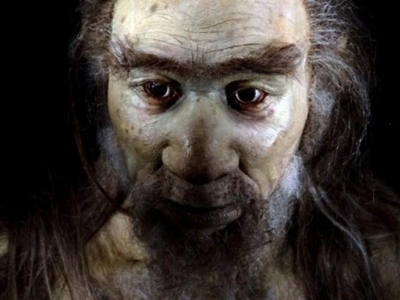 Los primeros Homo sapiens en Europa eran adaptables al clima