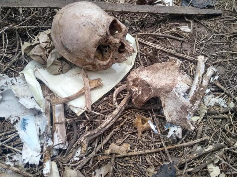 Madres Buscadoras encuentran restos humanos en la Región del Mayo