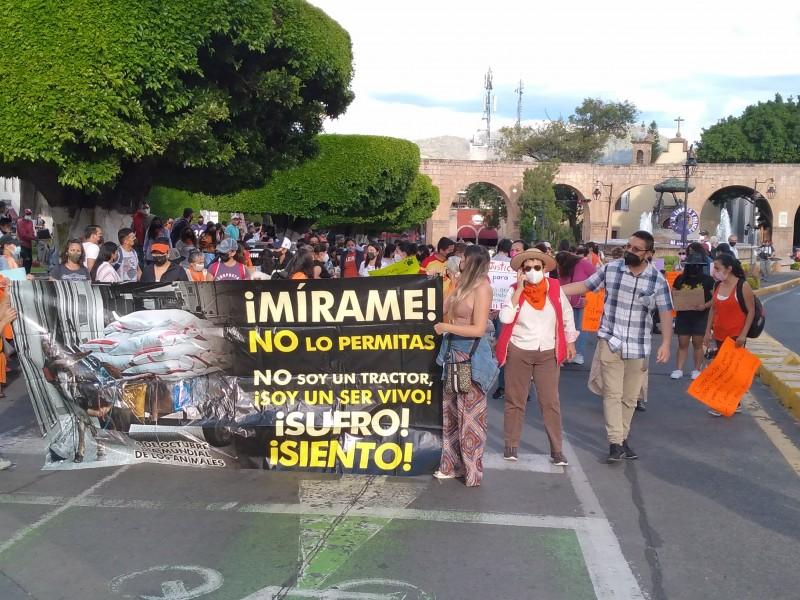 Marchan para exigir justicia para Boby, perrito asesinado en Tangamandapio