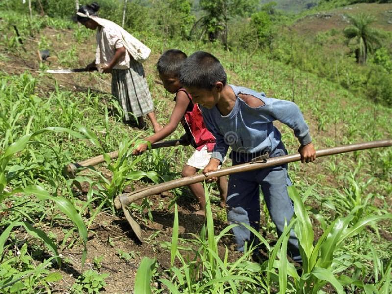 Más de 150 millones de niños en condición de pobreza