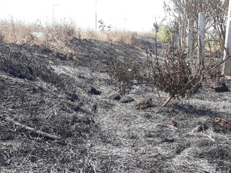 Más de 47 mil hectáreas consumidas incendios 2019