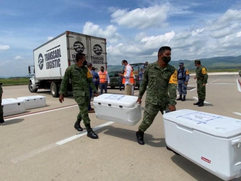 Más de 500 mil dosis de vacunas aplicadas en Chiapas