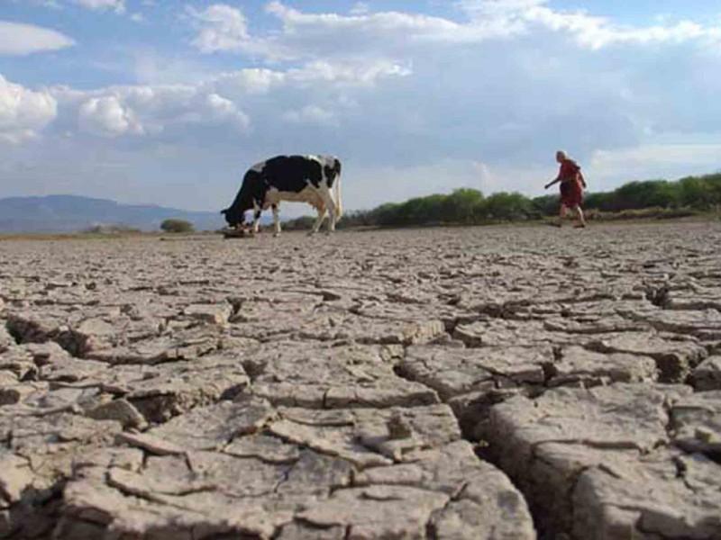 Más del 70% de Michoacán presenta sequía severa