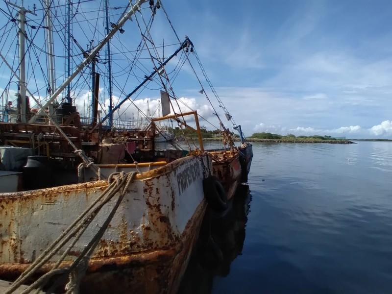 México recupera certificación para la exportación de camarón hacia EU