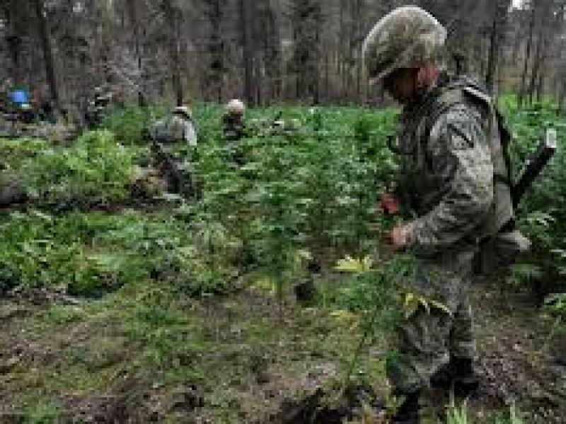 México refrenda con EUA compromiso combate narcotráfico