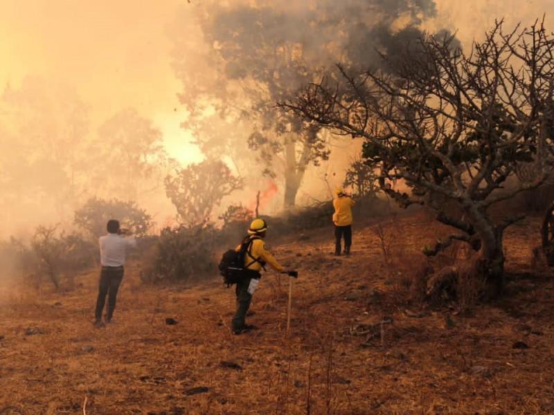 Michoacán, cuarto lugar nacional en incendios forestales