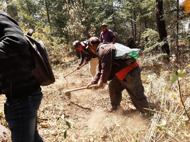 Michoacán ocupa la tercera posición con mayor número de incendios