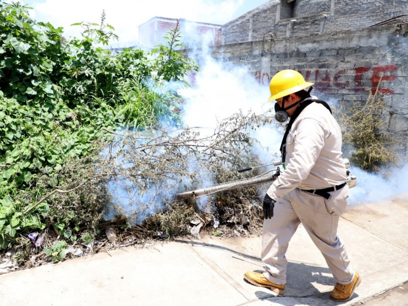 Michoacán suma 27 casos de dengue