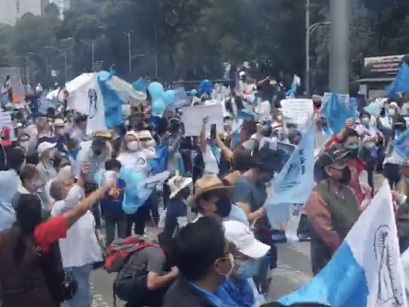 Miles marchan contra al despenalización del aborto