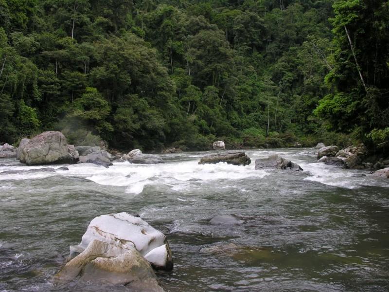 Millonaria inversión para cuencas en la entidad