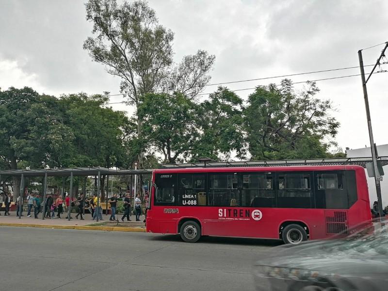 Modificarán derroteros del transporte público por Romería
