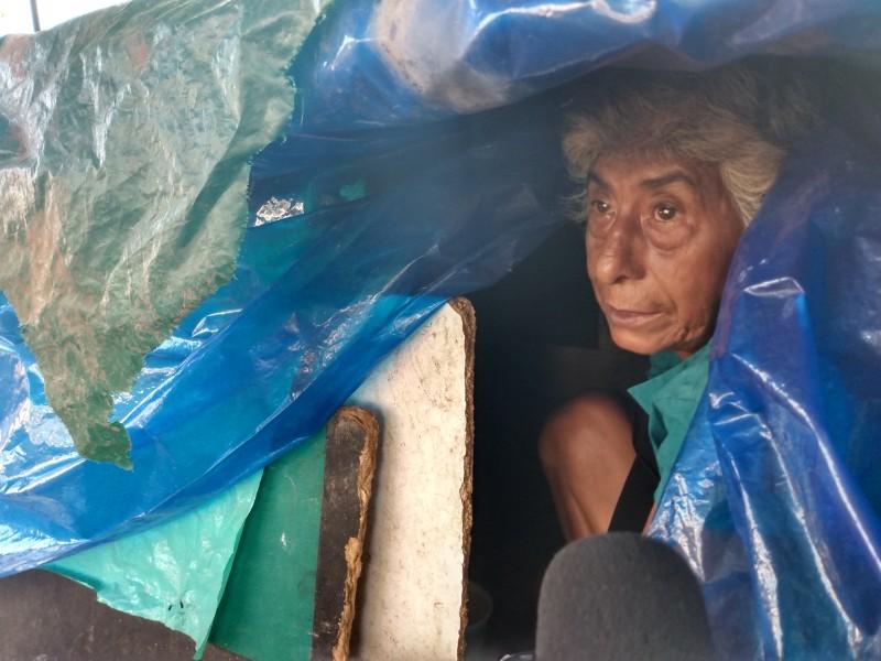 Mujer indigente vive en una jardinera de parque
