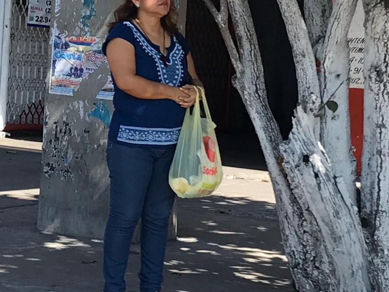 Municipios no han cambiando reglamento para prohibir plásticos
