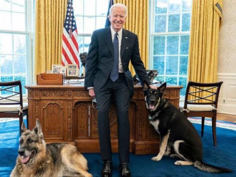 Murió Champ, uno de los perros del presidente Biden