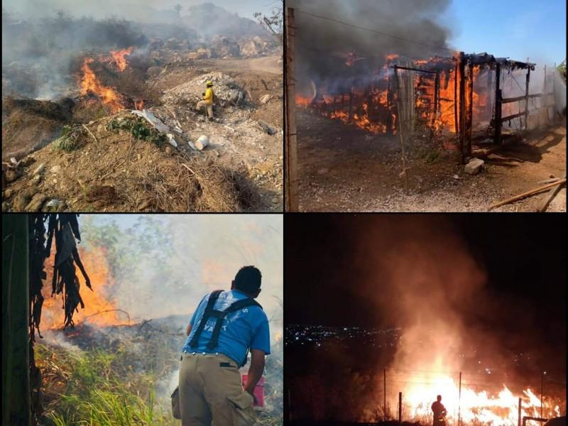 Nayarit afectado por incendios Forestales; registra 7 de gran impacto