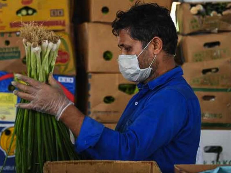 Nayarit tardará 2 años en recuperar los empleos perdidos