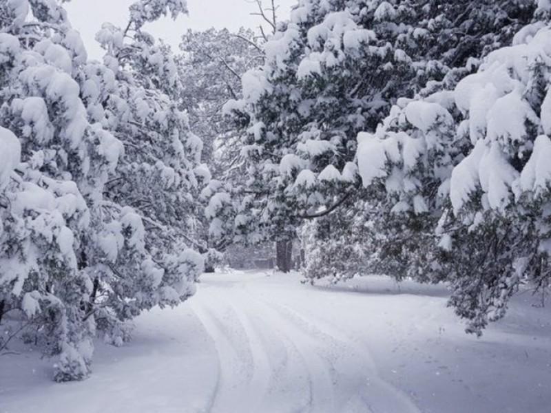 Nevadas sorprenden y congelan al norte del país