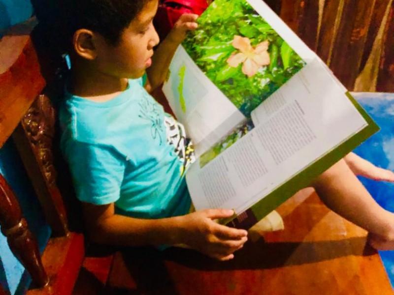 Niños a concurso de arte y lectura virtual