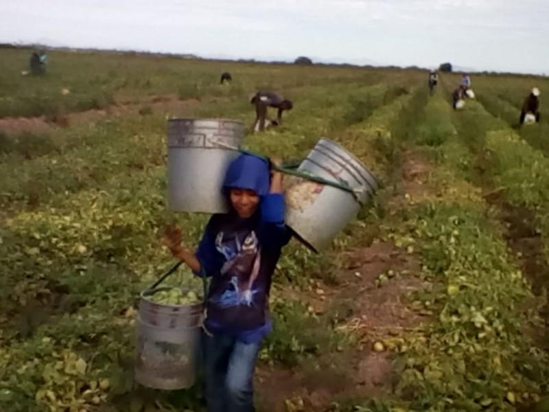 Niños siguen siendo trasladados al campo
