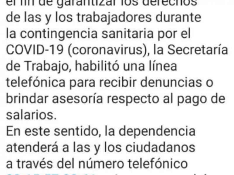 No contestan teléfono para denuncias de la Secretaría de Trabajo