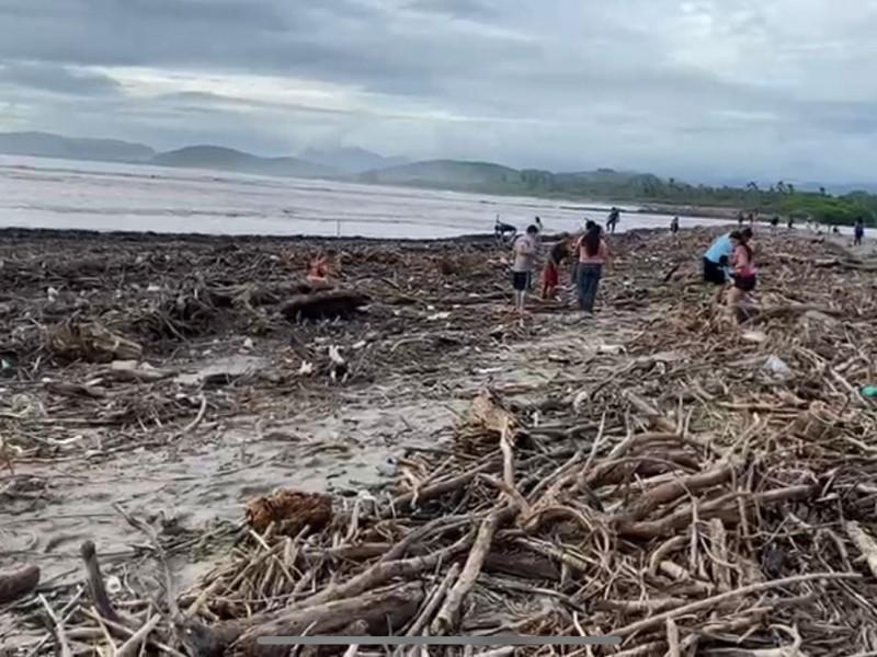 """""""Nora"""" arrastró toneladas de basura y árboles a playa Linda"""