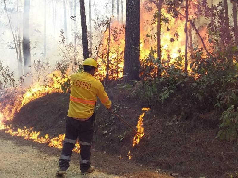 Oaxaca cierra temporada 2021 de incendios forestales con 183