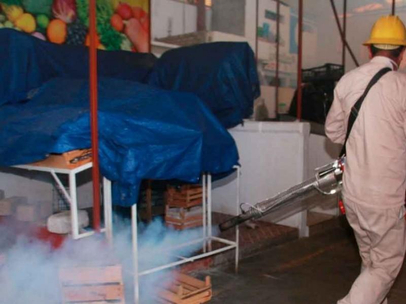 Oaxaca, en zona de alarma por dengue; registra dos decesos