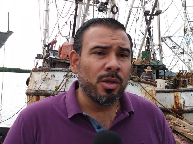 Paralizados 500 camarones en Mazatlán